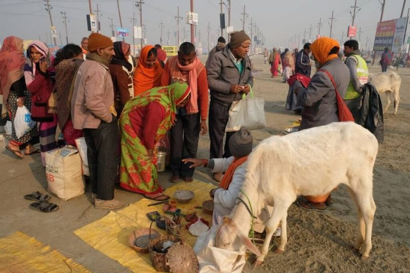 How to conduct Gau Daan in India?
